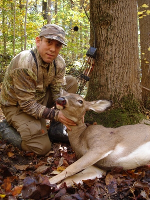 attached file